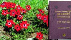 Kürtçe bitki isimleri sözlüğü çıktı