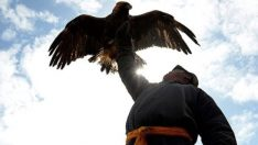Moğolistan'da yaşam