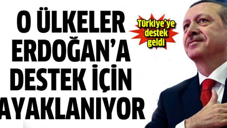 6 ülkeden Başbakan Erdoğan'a destek mitingi