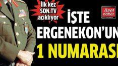 Ergenekon'un bir numarası