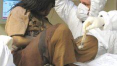 500 yıllık Inka mumyasının sırrı çözüldü
