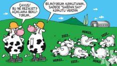 En komik 'Öküz' karikatürleri