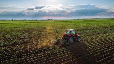 Türkiye'ye 780 bin hektar arazi tahsis edildi