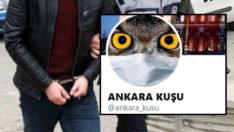 Ankara Kuşu Oktay Yaşar 'FETÖ propagandası'ndan tutuklamaya sevk edildi