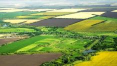 Cumhurbaşkanı'nı talimat vermişti: 14 bin dekar arazi çiftçilere tahsis edilecek